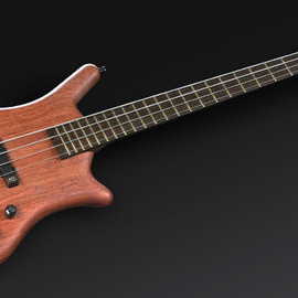 Warwick - thumb bass