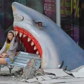 shark-attack-bench