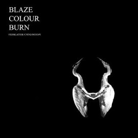Jan St. Werner - Blaze Colour Burn