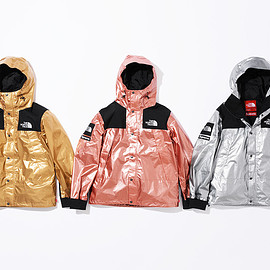 Supreme, THE NORTH FACE - Metallic Mountain Parka