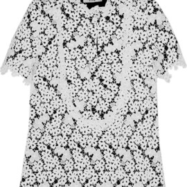 Erdem - Deacon embroidered lace top