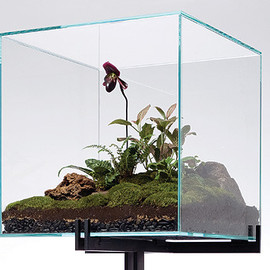 Lindsey Taylor - Terrarium, free-standing, made by Atlas Indistries for Partners and Spade/New York