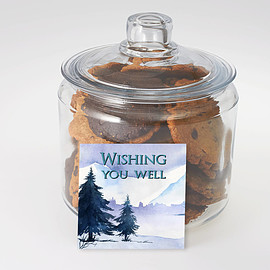Better Cookies.ca - Get Well Cookie Jar Delivered in the GTA