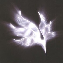 BUMP OF CHICKEN - orbital period