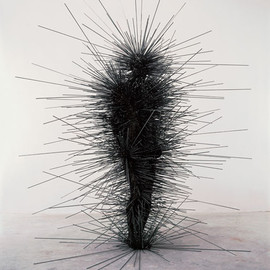 Antony Gormley  - CAPACITOR, 2001