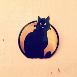 france vintage - cat brooch
