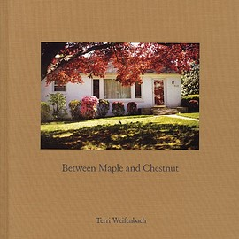 Terri Weifenbach - Between Maple and Chestnut, Deluxe Limited Edition (with Type-C Print)
