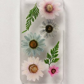 Anthropologie - Pressed Daisies iPhone 5 Case