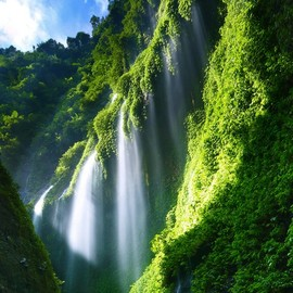 Indonesia - Madakaripura Waterfall