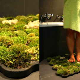 Yanko Design - Live Moss Carpet