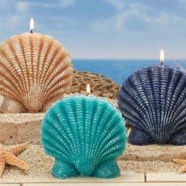 "Seascapes Ocean Mist Scented Scalloped Seashell Candles 5.2"" - Novelty Candles"