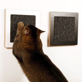 Square Cat Habitat - Itch Scratch