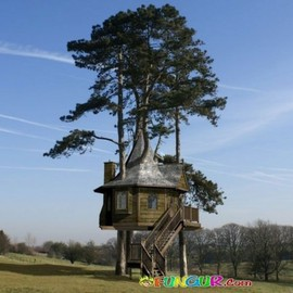 treehouses - Awesome Treehouses Gallery