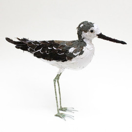 abigailbrown - Image of GREENSHANK