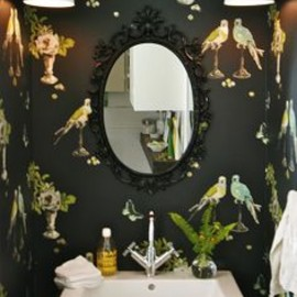 wall paper - Papered bird in Powder Room