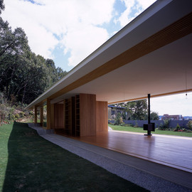 Thin Roof House