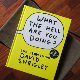 DAVID SHRIGLEY - WHAT THE HELL ARE YOU DOING?