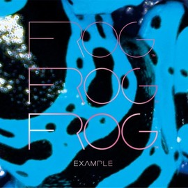 FROG - EXAMPLE