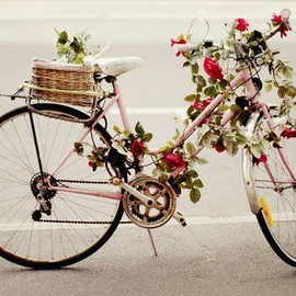 vintage bicycle and flowers...