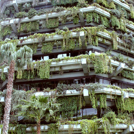 Vertical garden in barcelona