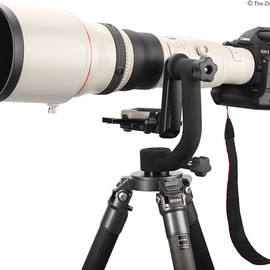 Canon  - EF 800mm f/5.6 L IS USM