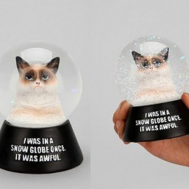 urban outfitters - Grumpy Cat Snow Globe
