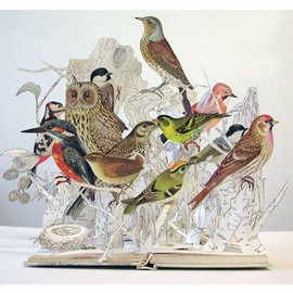 Su Blackwell - The Illustrated Book of Birds