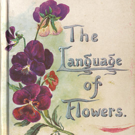 Margaret Pickston - The Language of Flowers