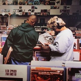 dj shadow - Excessive Ephemera