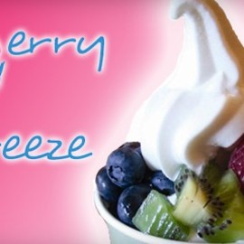 Berry Freeze - Brookline - Frozen Yogurt