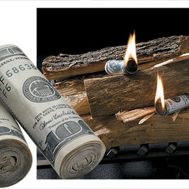 Money to Burn Fire Starters