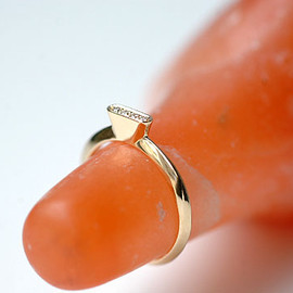 tortue - ring