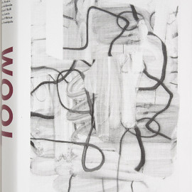 Christopher Wool Catalogue - Christopher Wool Catalogue