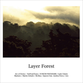 V.A - Layer Forest