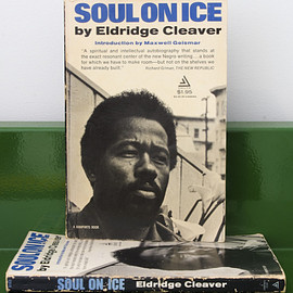 Eldridge Cleaver - Soul on Ice