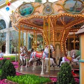 Bellagio Flowers and Carousel