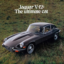 Advertisement Jaguar E-type  One day I will own this car!