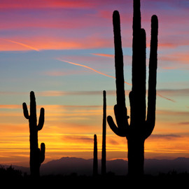 Arizona - Sunset in Apache Junction