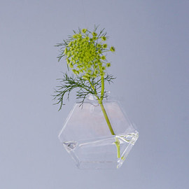 OF PLANTS - glass wall vase / Hexagon