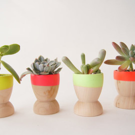 windandwillowhome - Mini Planters set of 4, Neon, Natural Wedding, Spring Decor, Succulents