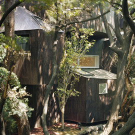 Hiroshi Nakamura&NAP architects - Dancing trees, Singing Birds (Bird Park Residence)