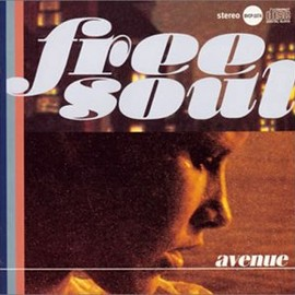 Various Artists - Free Soul Avenue
