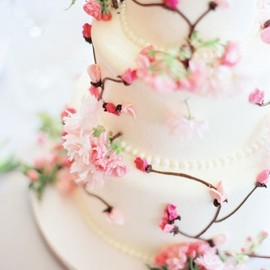 flower - Cherry Blossom Wedding Cake