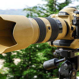 "Nikon - Photographer Gives His Nikon Gear a DIY ""Desert Mirage Lizard"" Paint Job"
