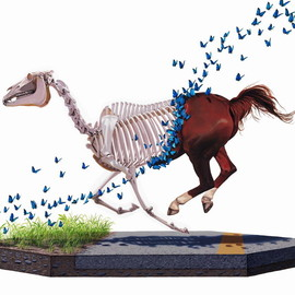 Josh Keyes - Shedding
