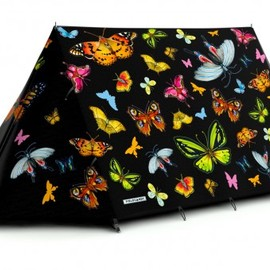 FieldCandy - Social Butterfly