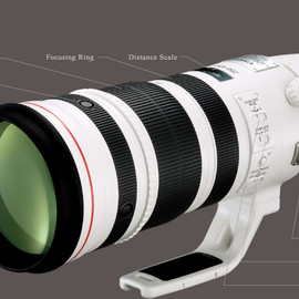 Canon - EF200-400mm F4L IS USM エクステンダー 1.4×