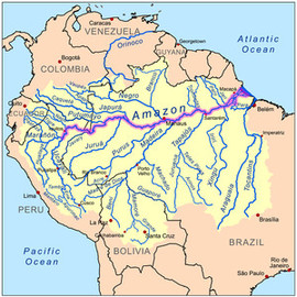 Waterway - Amazon River System