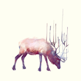 Amy Hamilton - Elk // Solitude Art Print