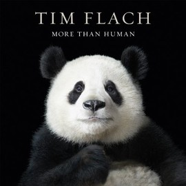 Tim Flach - More than Human